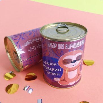 Оригінальний подарунок РОСЛИНА в консервній банці